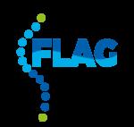 Logo FLAG exe-01